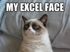 Excel face