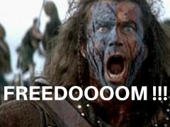 FREEDOOOOM 2